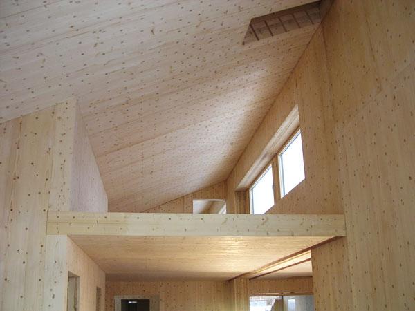 Legno - materialie da costruzione ideale